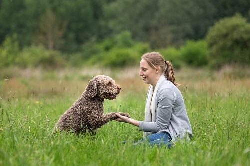 Pootje-Amor-hond-Ashley